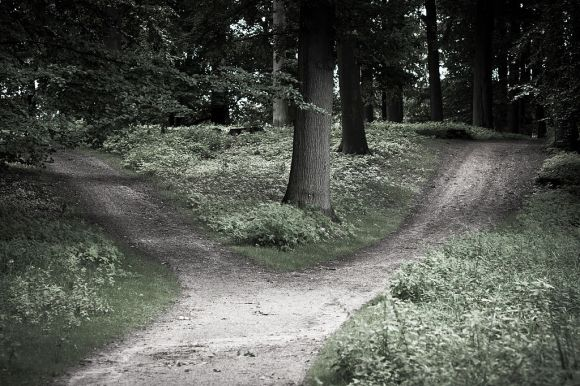 By Carsten Tolkmit from Kiel, Germany (crossroads) [CC BY-SA 2.0 (http://creativecommons.org/licenses/by-sa/2.0)], via Wikimedia Commons