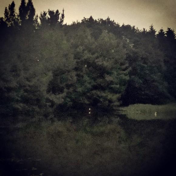 InstagramCapture_f51c068b-b0bf-4636-9181-2b171784b16f