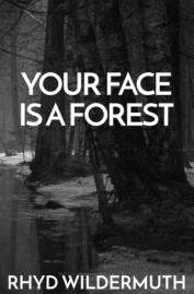 YOUR+FACE+cover